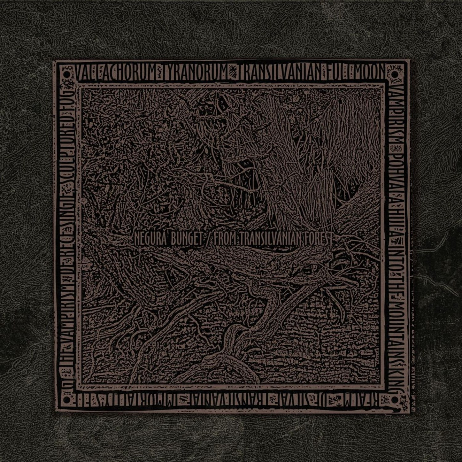 Review for Negură Bunget - From Transilvanian Forest