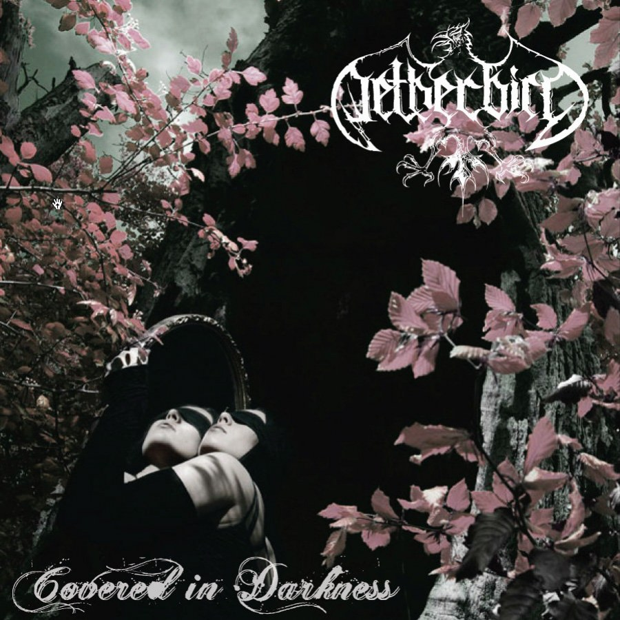 Reviews for Netherbird - Covered in Darkness