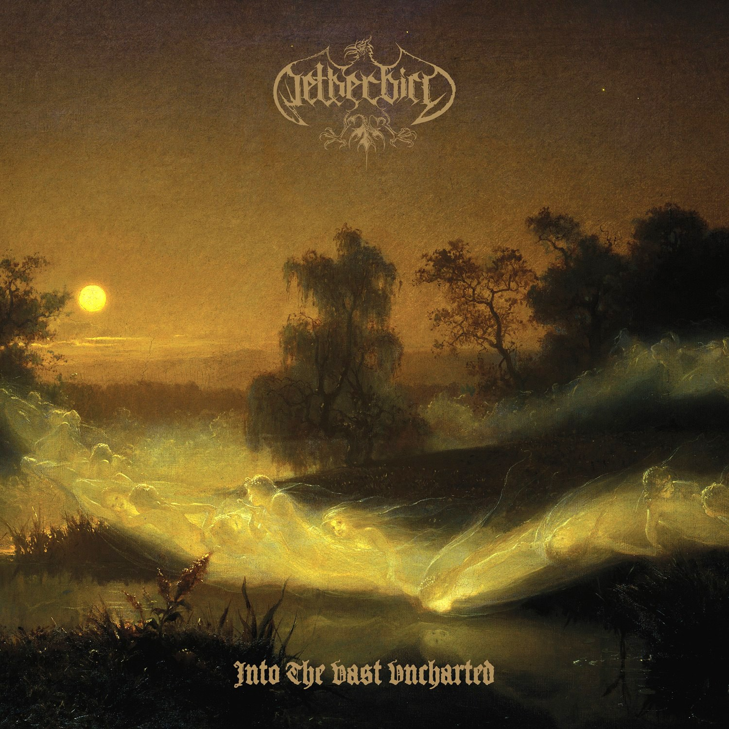 Reviews for Netherbird - Into the Vast Uncharted