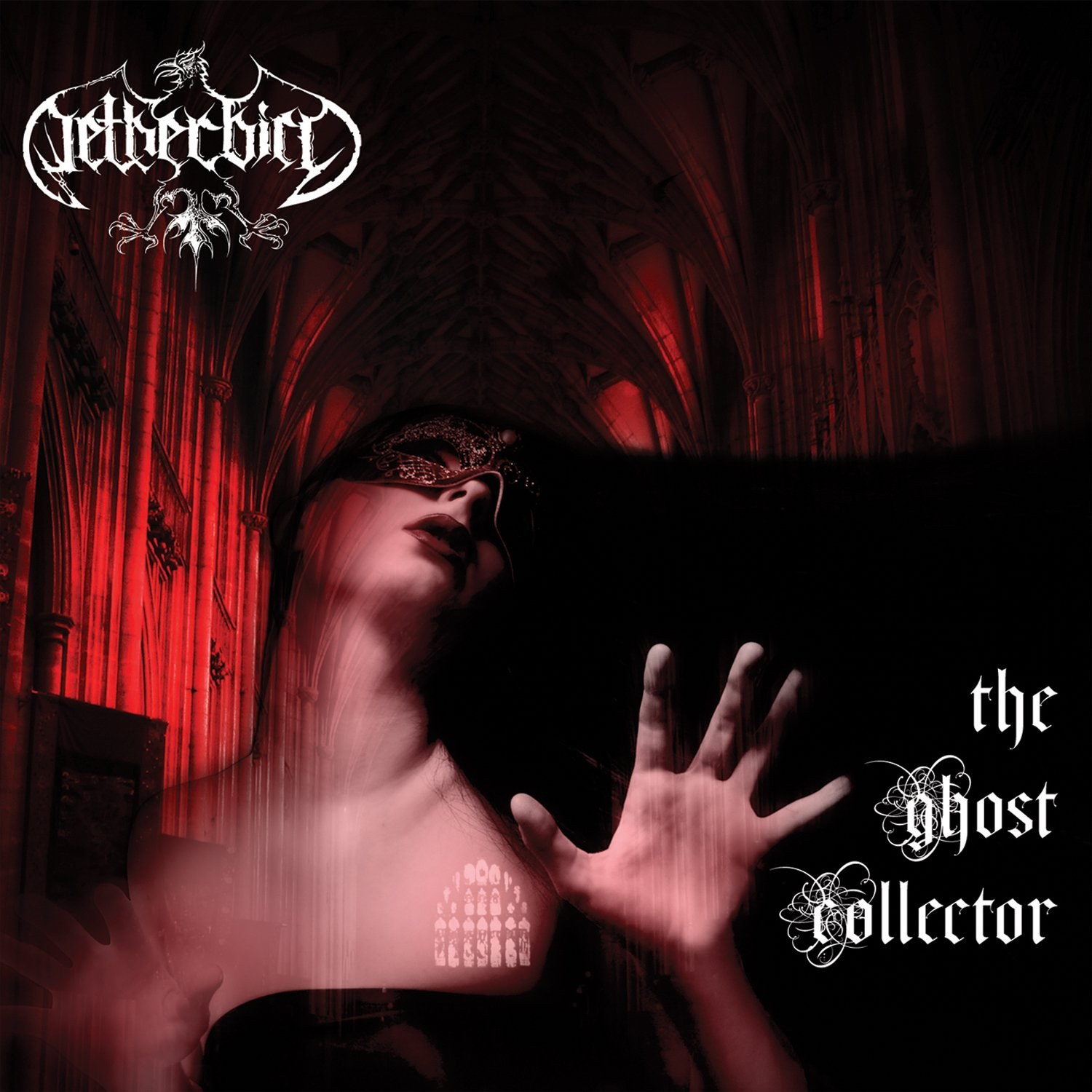Reviews for Netherbird - The Ghost Collector