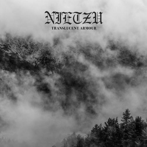 Reviews for Nietzu - Translucent Armour
