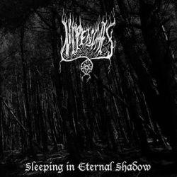 Reviews for Nipenthis - Sleeping in Eternal Shadow
