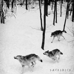 Review for Nocturnal Legion - Sacrifice