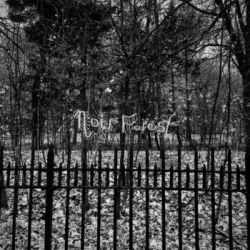 Reviews for Noir Forest - Civilization's Grand Horror