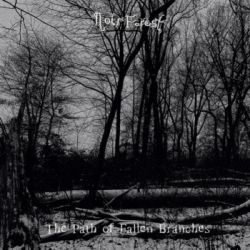 Reviews for Noir Forest - The Path of Fallen Branches
