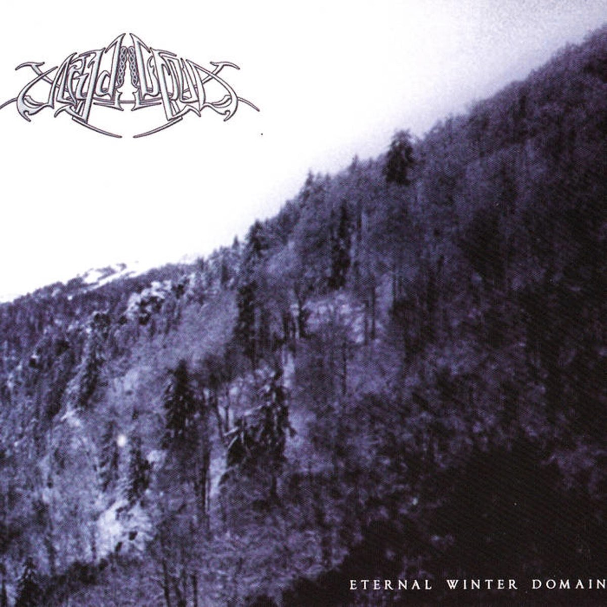 Review for Nydvind - Eternal Winter Domain