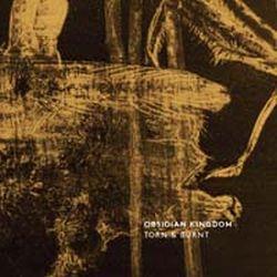 Obsidian Kingdom - Torn & Burnt (The Mantiis Remixes)