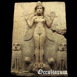 Occultarum - Successio In Abruptum