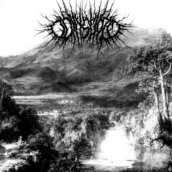 Review for Odinsgoat - Datura