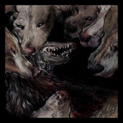 Reviews for Okkultokrati - Night Jerks