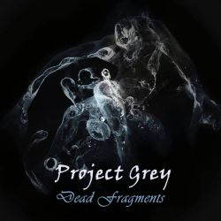 Review for Project Grey - Dead Fragments