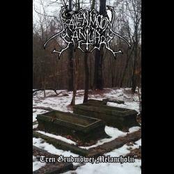 Ravenmoon Sanctuary - Tren Grudniowej Melancholii