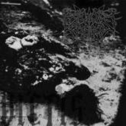 Reviews for Reign of Erebus - Vae Victis