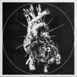 Reverie (DNK) - Bliss