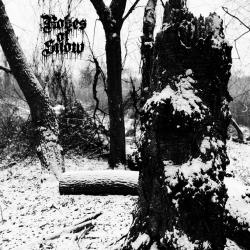 Reviews for Robes of Snow - Frostwood