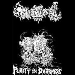 Reviews for Satanic Torment - Purity in Darkness