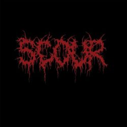 Reviews for Scour - Red