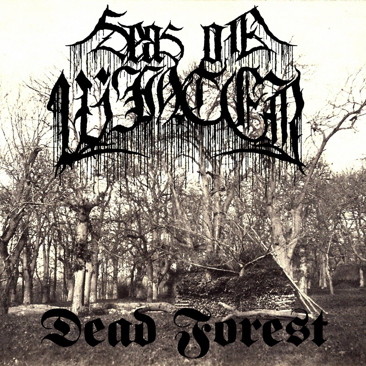 Reviews for Seas of Winter - Dead Forest