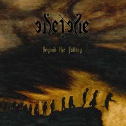 Seide - Beyond the Fallacy