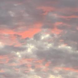 Reviews for Shelob's Lair (USA) - Big Missouri Sky