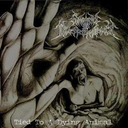 Reviews for Shroud of Despondency - Tied to a Dying Animal