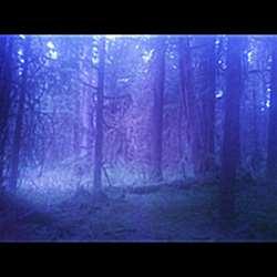 Reviews for Skaltros - Upper Wolf Lake Ritual