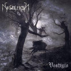 Review for Skialykon - Vestigio