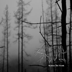 Review for Skjult - Within the Flesh