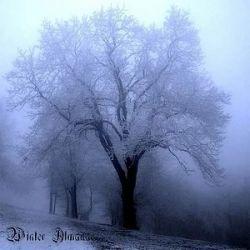 Reviews for Adramalech - Winter Almanac