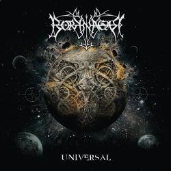 Reviews for Borknagar - Universal