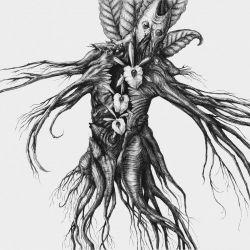 Reviews for Botanist - IV: Mandragora