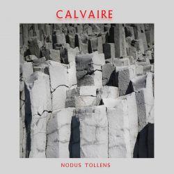Reviews for Calvaire (SGP) - Nodus Tollens
