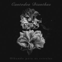 Reviews for Cantodea Dianthus - Olhando para as Estrelas