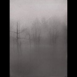 Reviews for Dark Fount - A Sapless Leave Withering in the Night Fog