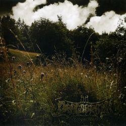 Reviews for Dragobrath - WhisperHerbs