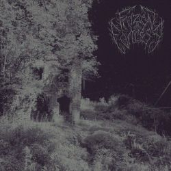 Reviews for Frozen Fortress - Where Fog Occupies the Paths of Life
