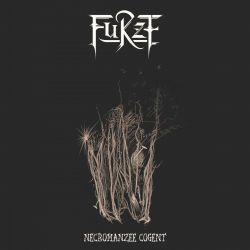 Reviews for Furze - Necromanzee Cogent
