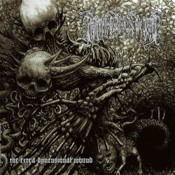 Reviews for Lightning Swords of Death - The Extra Dimensional Wound