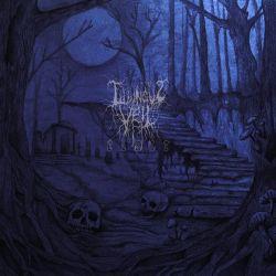 Luminous Veil - Clair