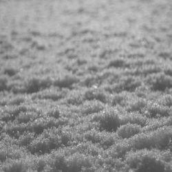 Paysage d'Hiver - Schnee