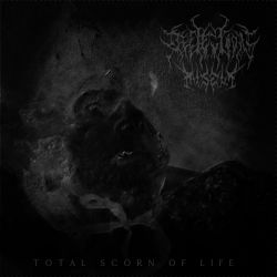 Reviews for Reflection of Misery - Total Scorn of Life