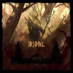 Reviews for Shadow of Nordloth - Iridal