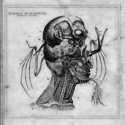 Reviews for Tenebrae In Perpetuum - Anorexia Obscura