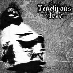 Reviews for Tenebrous Irae - Pain of Existence