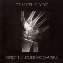 Reviews for Trancelike Void - Destroying Something Beautiful