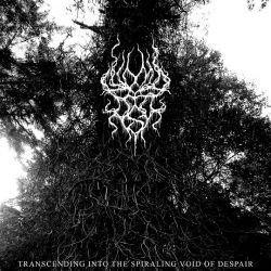 Reviews for Womb of Ash - Transcending into the Spiraling Void of Despair