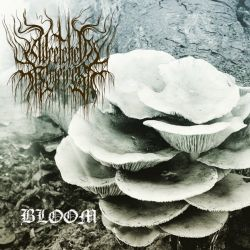 Wretched Empires - Bloom