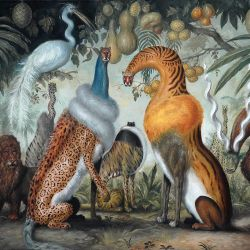 Reviews for ZAÄAR - Magická Džungl'a