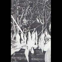 Songe d'Enfer - My Visions in the Forest
