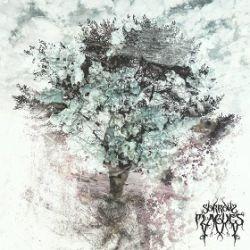 Sorrow Plagues - Sorrow Plagues